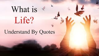 What is Life? Understand By These 12 True Meaningful Life Quotes