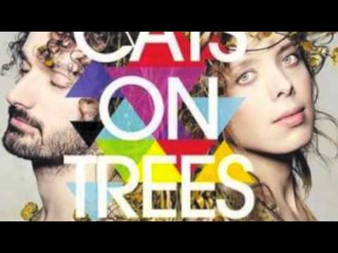 Cats On Trees - You Win Mp3
