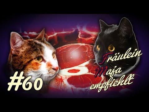 Katzenernährung Spezial BARF-Vorteile und Nachteile von BARF.#060