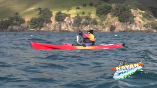 preview picture of video 'Kayak Fishing With KFDU Team in Coromandel New Zealand'