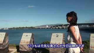 [HawaiiWebTV]真珠湾ツアー