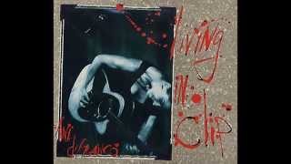 Willing to Fight - Ani Difranco