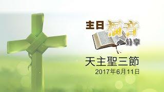 24主日福音分享-天主聖三節