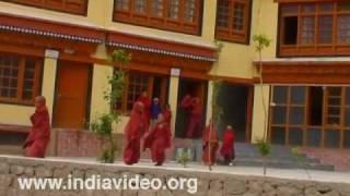 Rizdong Monastery School