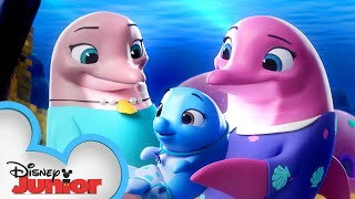 Pip And Freddys Ocean Adventure 🌊   T.O.T.S.   Disney Junior