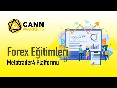 Meta Trader 4 Platform Kullanımı - 1.Bölüm