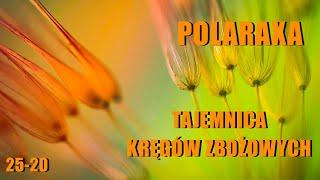 Polaraxa 25-20: Tajemnica kręgów zbożowych