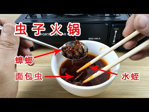 蟲子+蟑螂火鍋你敢吃嗎?