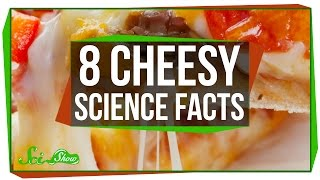 8 Cheesy Science Facts - Video Youtube