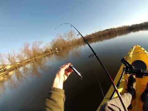 """How To """"Walk The Dog"""" With A Zara Spook Bass Fishing Lure!"""
