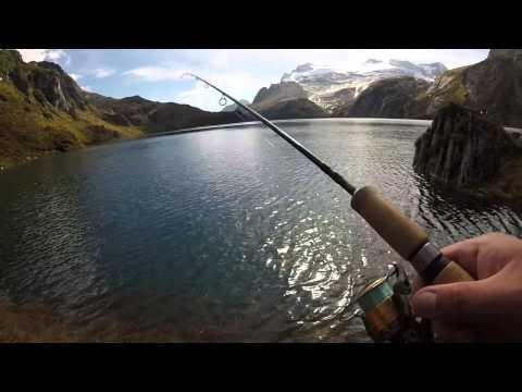 La pesca su una piscina