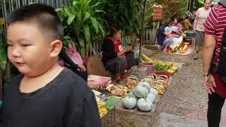 Fleat Market In Luang Prabang Laos Day 2 Part 2