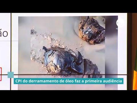 CPI do derramamento de óleo faz a primeira audiência - 05/12/19