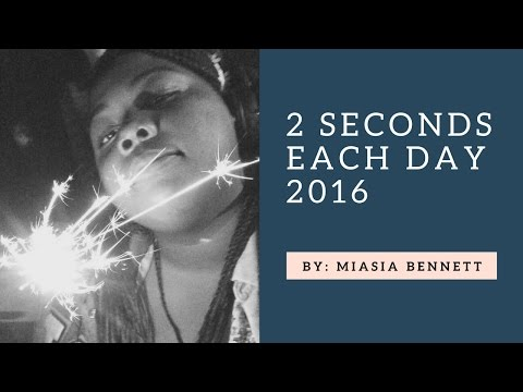 2 Seconds (almost) Everyday: 2016