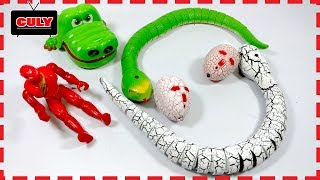 2 Con Rắn màu trắng và xanh cá sấu cắn tay đồ chơi trẻ em Snake toy Crocodile