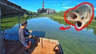 Что будет если искупаться в реке Припять. Выловил мутанта. Рыбалка в Чернобыле