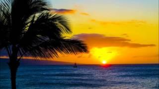 """LONE PALM"" by Jimmy Buffett"