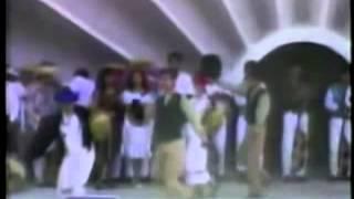 preview picture of video 'Danza Comarapeñita'