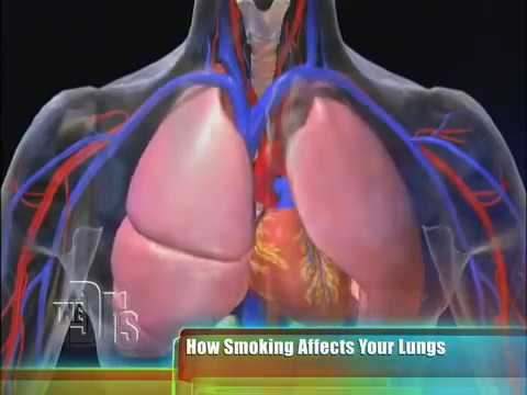 How Smoking Affects the Body on 'The Doctors'