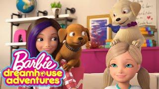Dreamhouse Adventures Character Bio - Pets | UK | Barbie