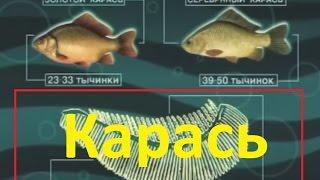 Кто вел диалоги о рыбалке