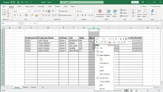How to display Zip Codes, Telephone Numbers and SSN in proper format in Excel - Office 365