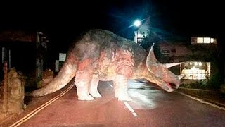 Download Youtube: 10 DINOSAURS CAUGHT ON CAMERA IN REAL LIFE