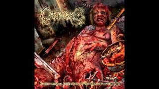 Top 5 Brutal Death Metal Bands