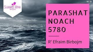 Parashá Noach 5780/ 2019