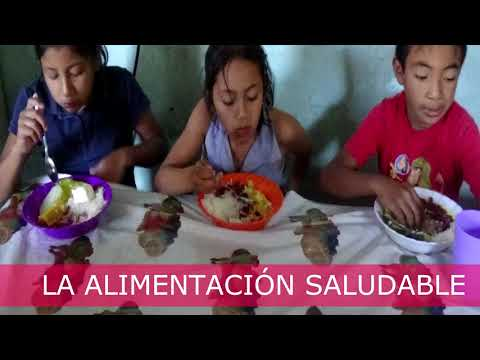 Strengthening the Nutrition Program, 63 children