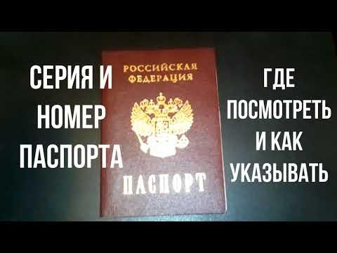 Где посмотреть серию и номер паспорта Где находится серия и номер паспорта РФ