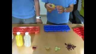 How To Make Flavored Ice Cubes With A Surprise Inside