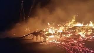 В Одесской области горела заброшенная база отдыха
