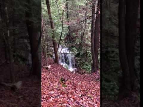 Video Of Lago Linda Hideaway, KY