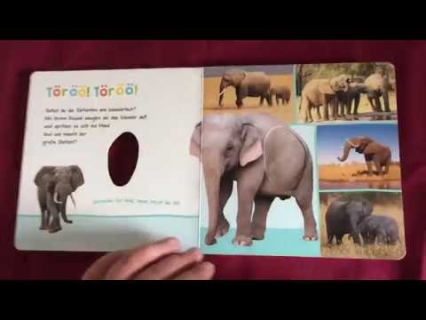 Baby Buch Zootiere mit Geräusche - Babykanal mit Papa - Review