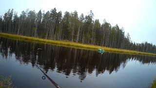 Отчеты о рыбалке в карелии 2020 дикарем