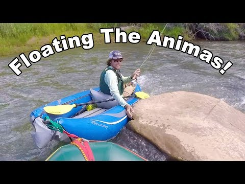 Floating the Animas