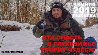 Фото зимняя рыбалка в высоком качестве