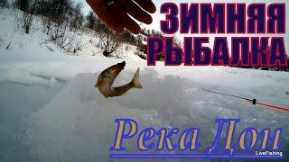 Зимняя рыбалка на доне
