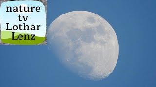 Смотреть онлайн Нереальный зум позволил разглядеть Луну
