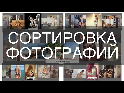 Гороскоп лев 2017 от василисы володиной
