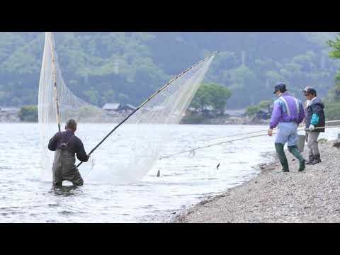 【びわ湖の漁業】伝統漁法編2 おいさで漁