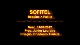 Sofitel the