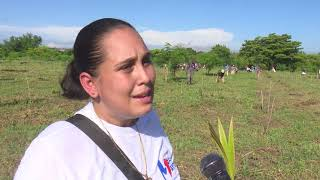 Santiago de Cuba en trabajo voluntario masivo por más alimentos
