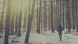 If A Hipster Walks In The Forest - HD Video Background Loop