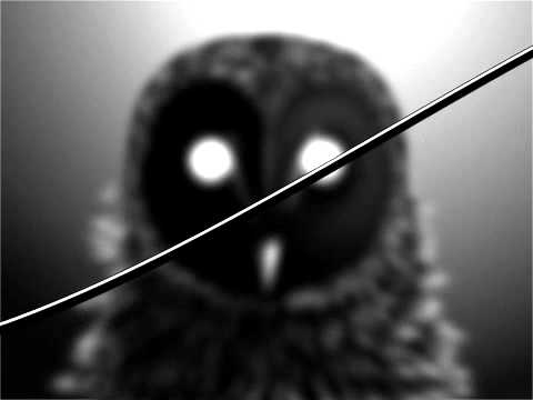 The Owl (Song) by I Love You But I've Chosen Darkness