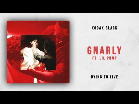 Kodak Black Gnarly Feat Lil Pump