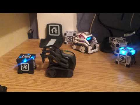 ANKI VECTOR ROBOT Review, Version 1 1 Update - See Vector In