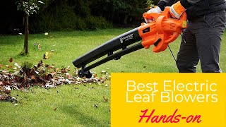 Best Electric Leaf Blowers in 2020