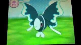 Lumineon  - (Pokémon) - Lumineon - Pokemon Amie
